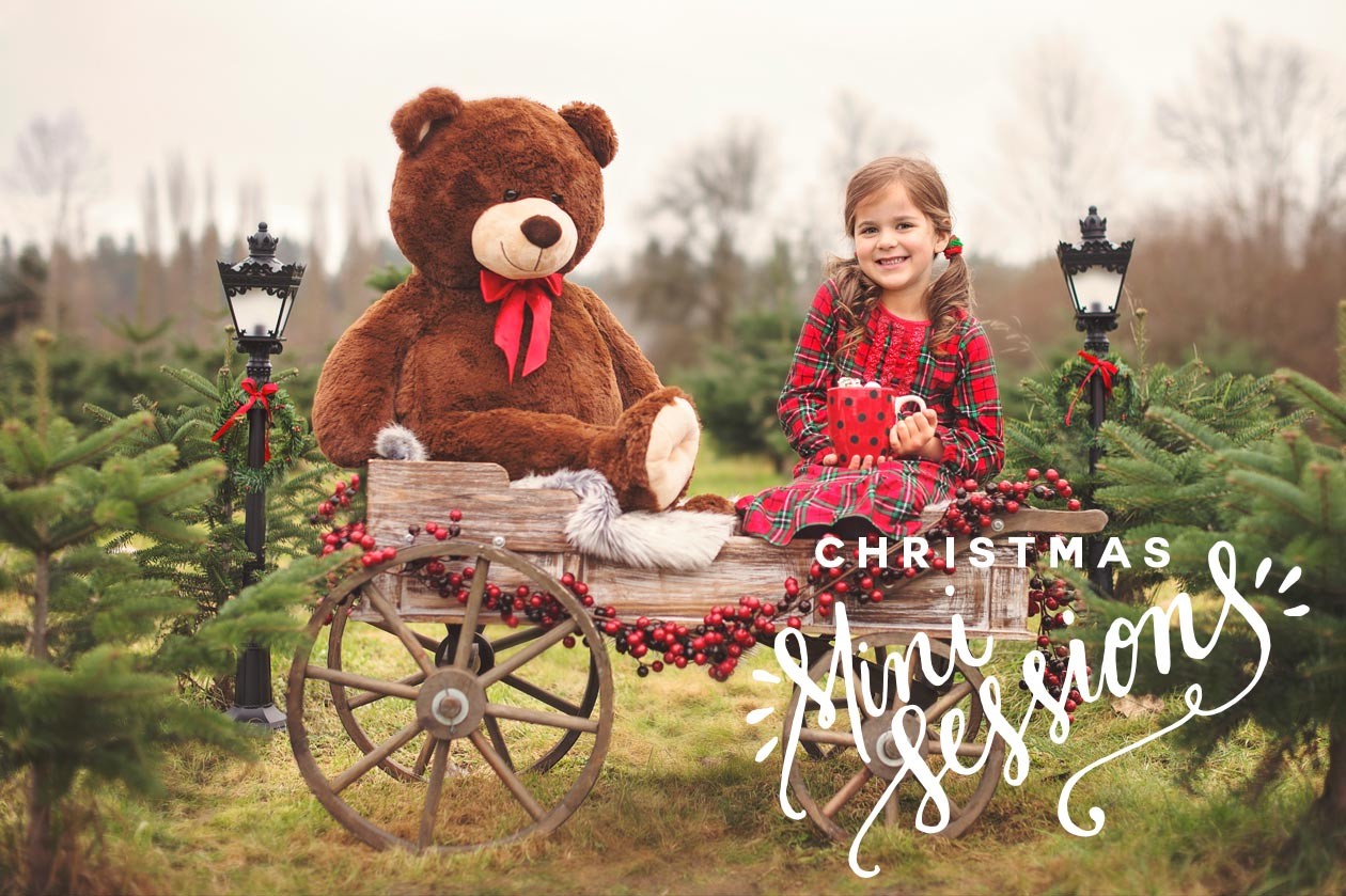 2016 Christmas mini-sessions