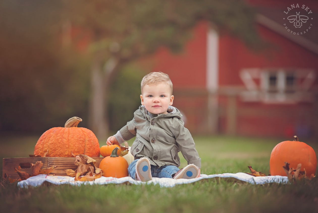 A fall portrait of a boy with pumpkins